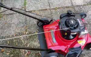 Best Gas push lawnmower