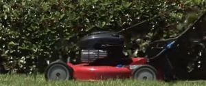Propelled Lawnmower