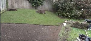 check the turf in lawn